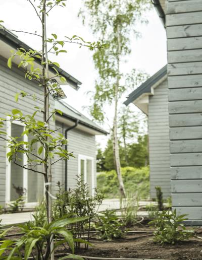 9-13-Format-Design-projekt-domu-letniskowego-ogród